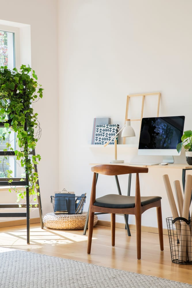 Home office interior with plant on ladder.